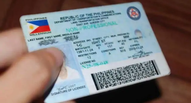 LTO Extends Driver's License Validity Until Dec. 31 For Specific Age Group