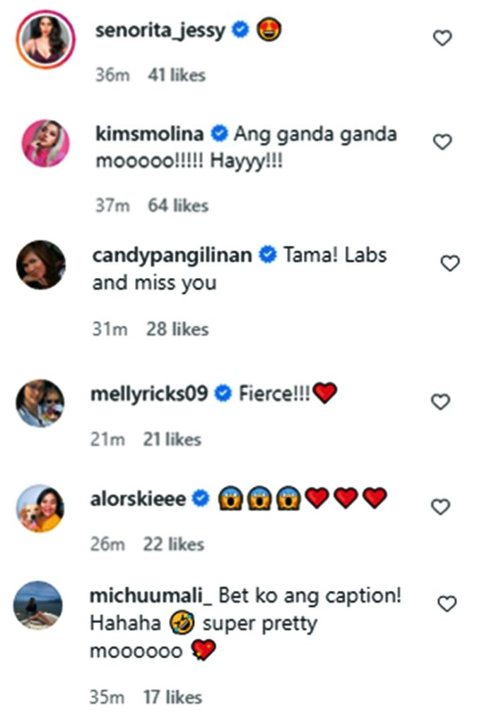 julia montes comments