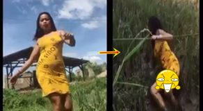 """Magandang Dilag"" Challenge Went Wrong After Young Lady Fell Into Muddy Field"