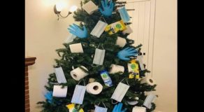 Netizen Shares Photo of Christmas Tree Decorated w/ Face Masks, Gloves & PPEs