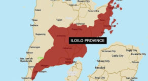 Soldiers Seized Illegal Plant Drugs at NPA Hideout in Iloilo Province