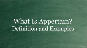 What Is Appertain? Definition And Usage Of This Term