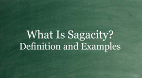 What Is Sagacity? Definition And Usage Of This Term