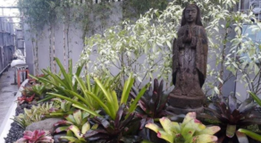Virgin Mary Statue Got Stolen From a Barangay in Sampaloc, Manila