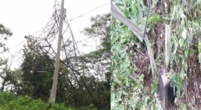 NGCP Tower Toppled Due to Sabotage & Causes Power Interruption