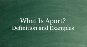 What Is Aport? Definition And Usage Of This Term