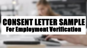 Consent Letter Sample For Employment Verification