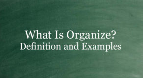 What Is Organize? Definition And Usage Of This Term