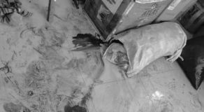 9 Activists Killed, 6 Arrested During the Police Operation in Calabarzon