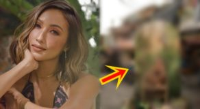 Solenn Heussaff 'Poverty Backdrop' To Promote Art Exhibit Criticized