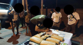 2 Arrested Attempt to Smuggle Illegal Drug Plant at Isabela Checkpoint