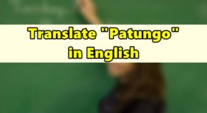 "Patungo in English – Translate ""Patungo"" in English"