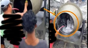 Construction Workers Turns Cement Mixer Into Washing Machine (Video)