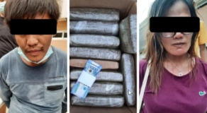 P1.3M Illegal Plant Seized from 2 Couple Check-in in a Hotel in Kalinga